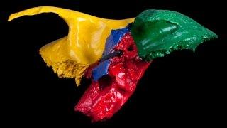 Анатомия височной кости. Часть 1