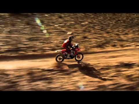 Rally Dakar  Helder Rodrigues Profile