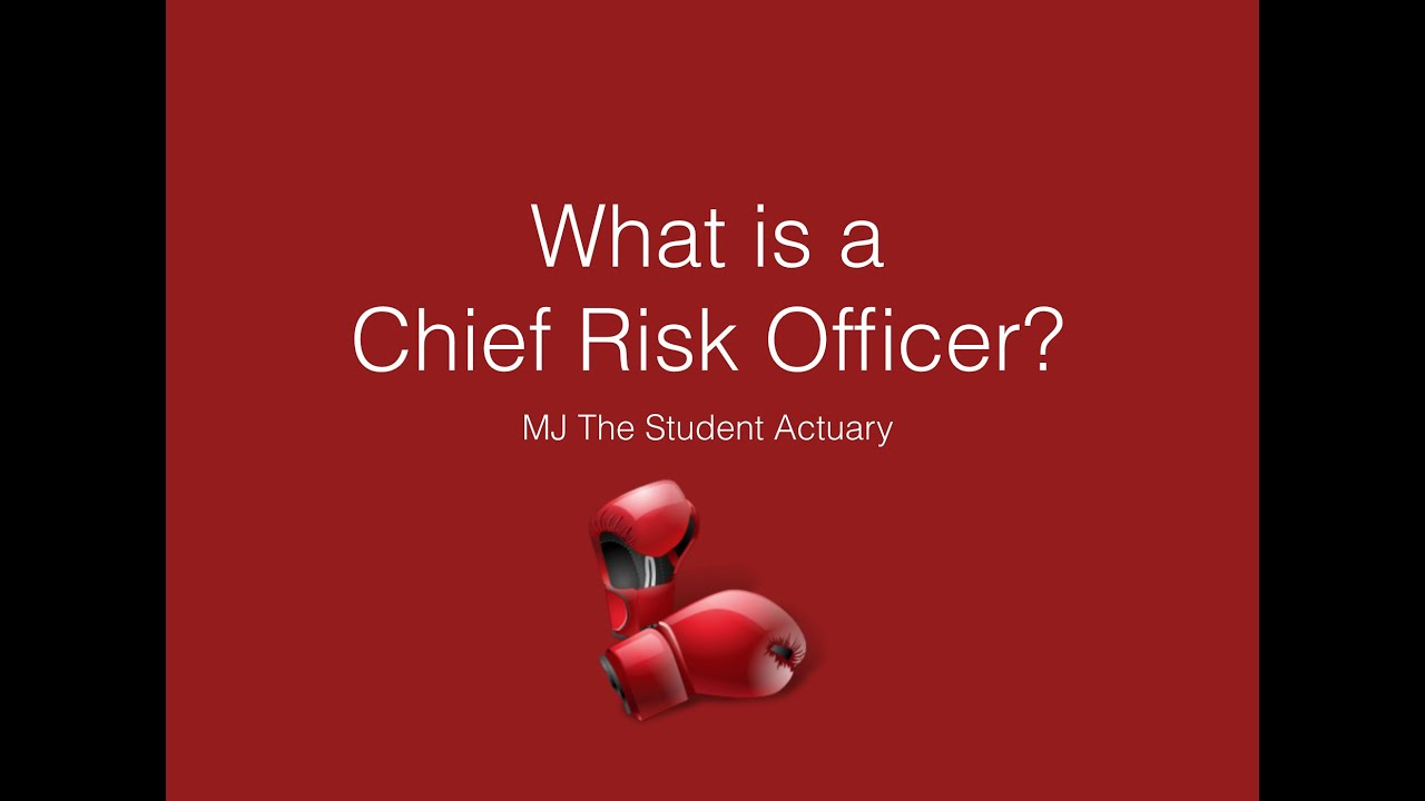 what is a chief risk officer  actuarial science
