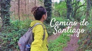 CAMINO DE SANTIAGO, ETAPA 2 | PORTOMARÍN-PALAS DE REI