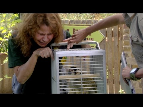 Britain's strangest zookeeper - Tracey Ullman's Show: Episode 5 Preview - BBC One