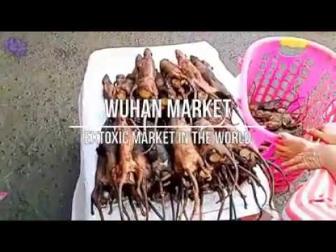 Wuhan Meat Market - Hell On Earth!