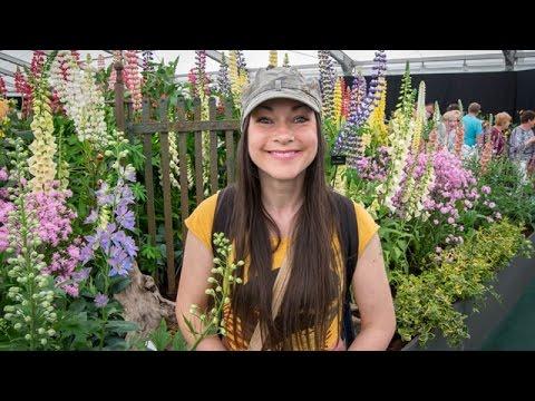BLOOM 2016 - Ireland's largest Gardening Festival, Phoenix Park, Dublin