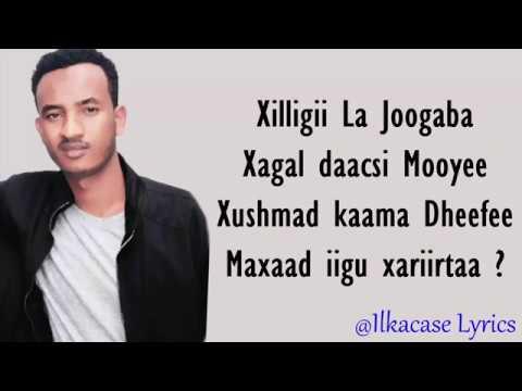 Xariir Ahmed Hees
