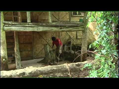 Vanuatu's Piggy Bank