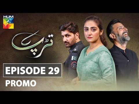 Tarap Episode 29 Promo HUM TV Drama