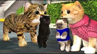 СИМУЛЯТОР Маленького КОТЕНКА #6 Беременная кошка родила котика смешное видео для детей Валеришка