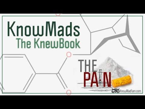 KnowMads ∞ The Pain ∞ The KnewBook (2012)