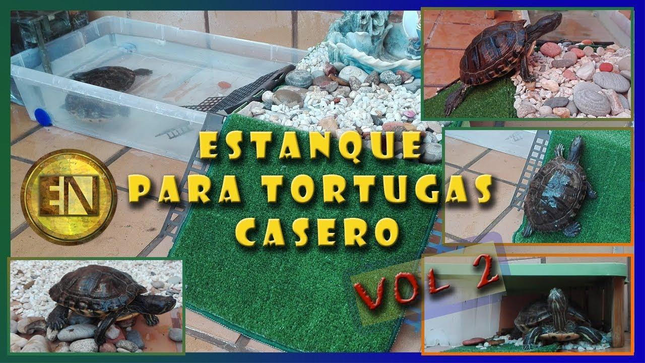 Estanque para tortugas casero youtube - Como decorar un estanque ...