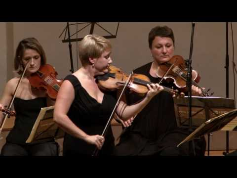 Bach - violin concerto in E major BWV 1042 - 1st mov. Allegro  -  Unplugged @ 7:24 :)