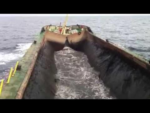 Awesome! Timber shipping and barge unload. Ship fails and accidents