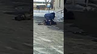 Сотрудники ГИБДД жестоко избили пешехода (Бурятия, Кабанский район, г. Бабушкин) (Видео 3)
