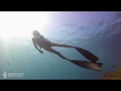 Indonesia Underwater