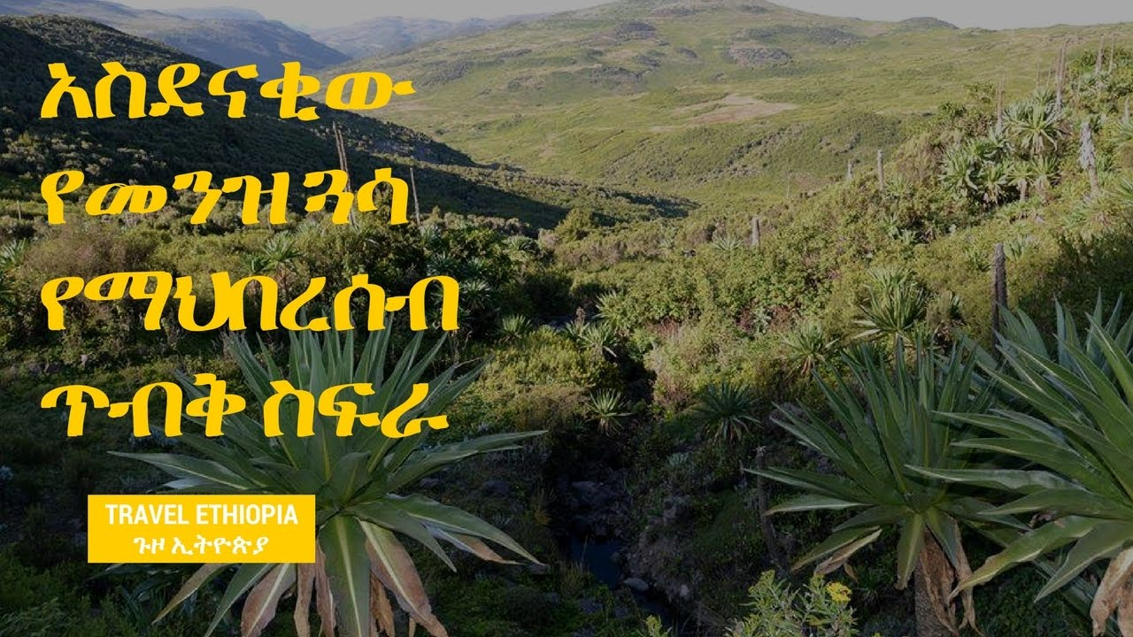 Travel Ethiopia - Discovering TV show Menze Gussa community conservation area