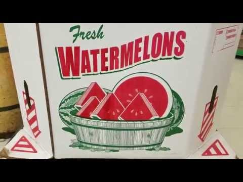 That's some weird looking watermelons