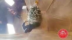 Flocking Christmas Tree - 6180 W. Hunt hwy, Queen Creek , AZ
