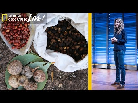 Walking Alone in the Wilderness: A Story of Survival (Part 3)   Nat Geo Live