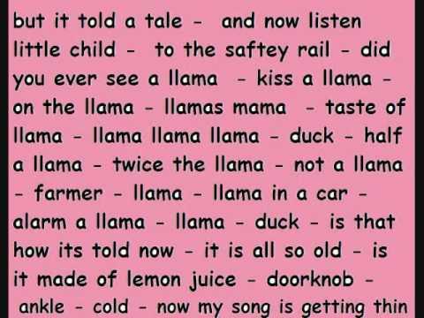 LLAMA SONG lyrics - YouTube