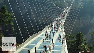 видео: В Китае открылся самый длинный и высокий стеклянный мост в мире