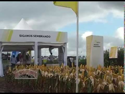 Expoagro 2015 – NIDERA Semillas