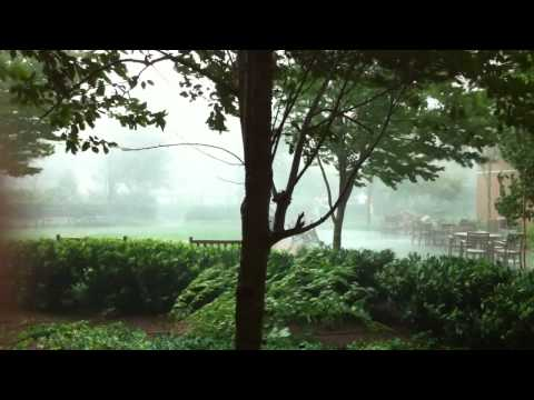 Tornado in Maryland Kills Power to 300,000
