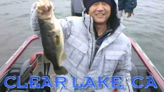 Bass Fishing @ Clearlake, Ca