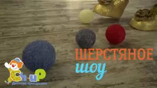 Детский праздник ШОУ - Шерстим!