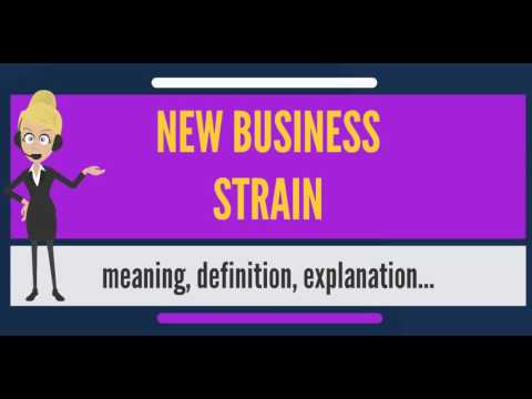 What is NEW BUSINESS STRAIN? What does NEW BUSINESS STRAIN mean? NEW BUSINESS STRAIN meaning