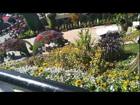 Dubai Miracle Garden 2020
