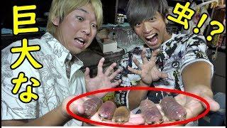 ハイサイ探偵団さんhttps://www.youtube.com/channel/UCyo6aLuDHbUoNTv-...
