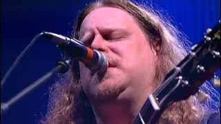 govt mule   banks of the deep end