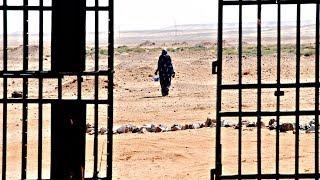 МОМ: Сахара в два раза опаснее для мигрантов, чем Средиземное море (новости)