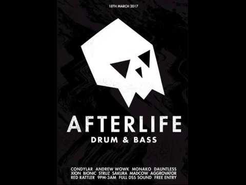 Mark Bionic - Afterlife 2017 Promo - Drum & Bass Mix