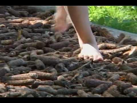 Around The World - International Feet.mov