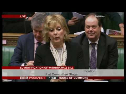 Article 50 Amendments debate day 2