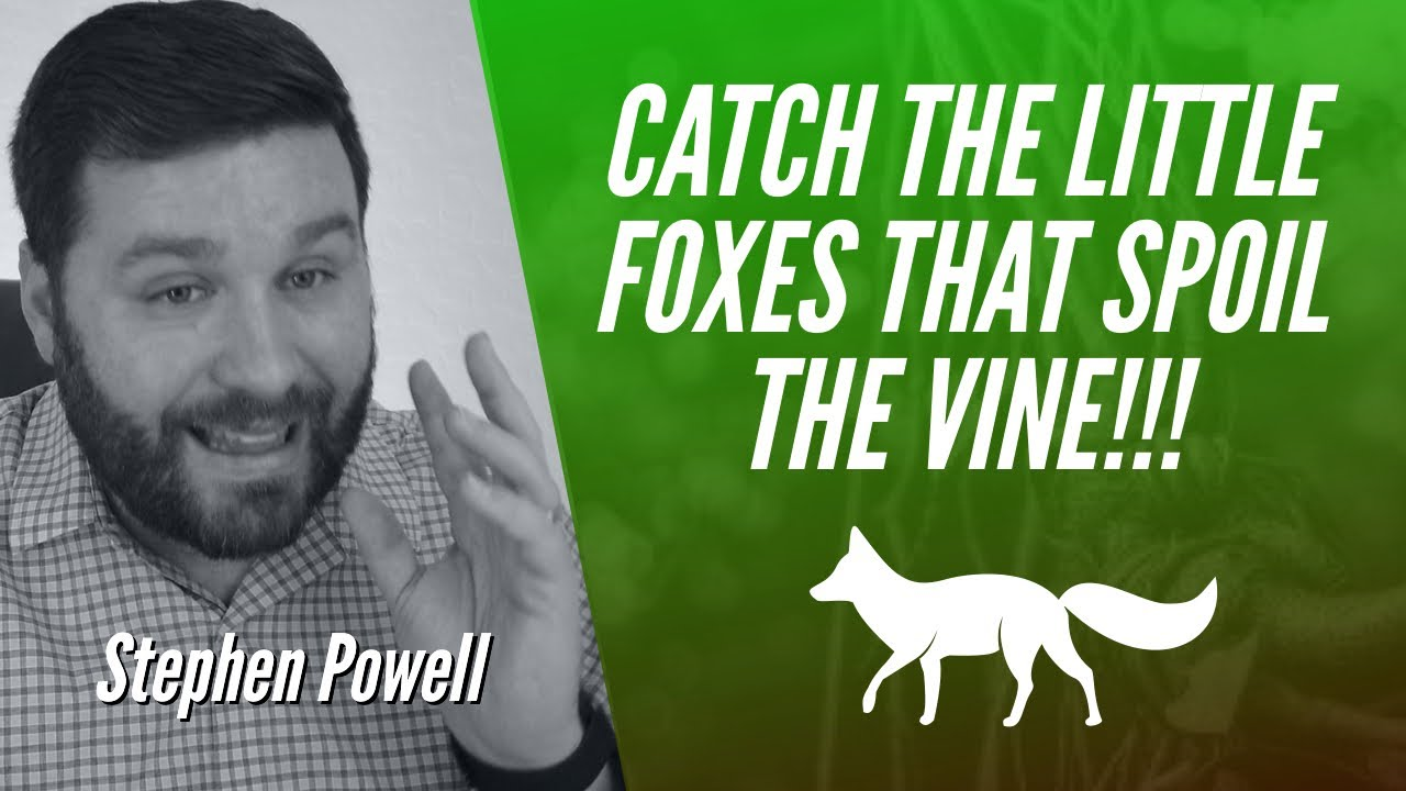 CATCH THE LITTLE FOXES THAT SPOIL THE VINE!!!