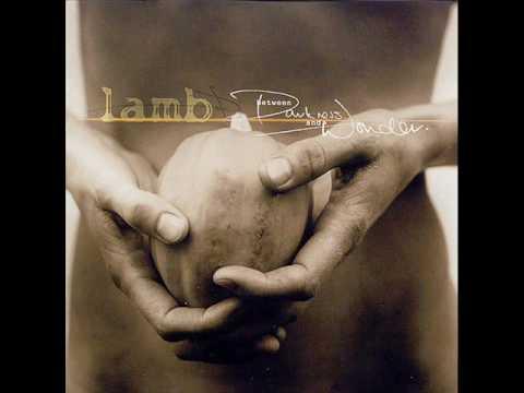 Lamb Angelica