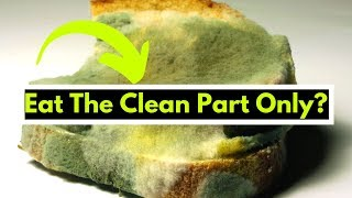 Can I Eat the Clean Part of Moldy Bread? | Fungus on Bread
