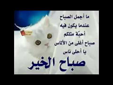 حبيبي صباح الخير صباحك ورد وفل ولوز Mp3 Makusia Images