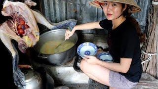 Bí ẩn bên trong con gà. Sau chuyến đi về vòng tay mẹ, ăn cháo gà (#miền tây) 🇻🇳188