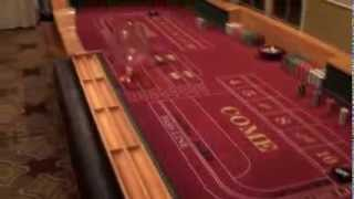 14 Ft. Deluxe Craps Table That Is Portable.