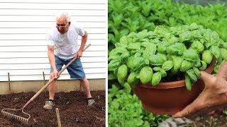Starting my Garden!