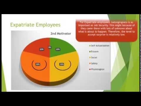 Group 22) What motivates people? Local employees Versus