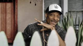 "Baixar Suga Free & Snoop Dogg ""Don't be thinking wit cho ---- Boy"" (OFFICIAL MUSIC VIDEO)"