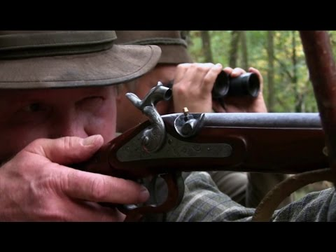 Hunting Fallow Deer Buck With An Original Muzzleloader In Gyulaj, Hungary