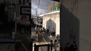 京都・東福寺へと向かう人の群れ、群れ、群れ 2 thumbnail