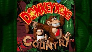What If Donkey Kong Country Used DK's Old Design?