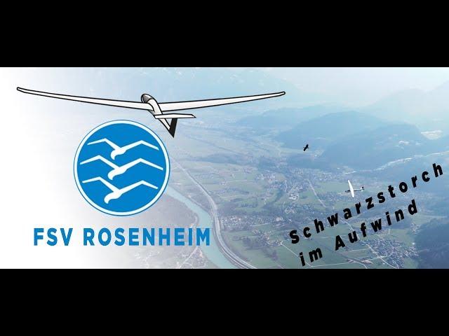 Flugsportverein Rosenheim Segelfliegen aus Leidenschaft - in Begleitung von einem Schwarzstorch