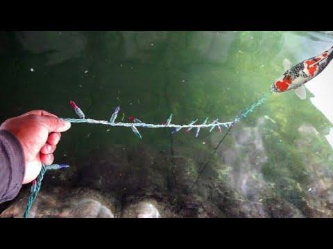 Christmas Light Fishing Challenge!!!