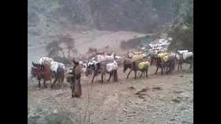 wazir khan afridi pashto song  .,  khyber /agency\ bara